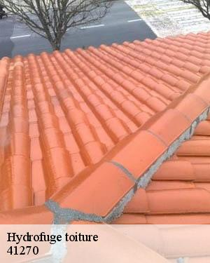 Professionnel en hydrofuge toiture à Villebout tel: 02.52.56.22.07